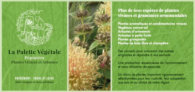 Flyer La Palette Végétale - eszett studio